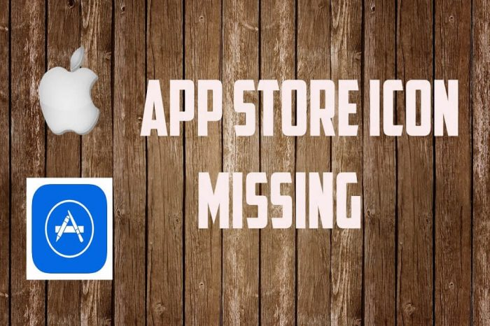 app store icon missing